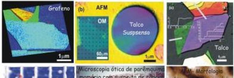 Scanning probe microscopy (SPM)
